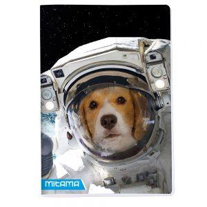 21038-02354-02355-02357-02358-DOG-Quaderno Mitama